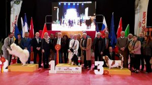Exposicion Internacional de Perpignan 2018