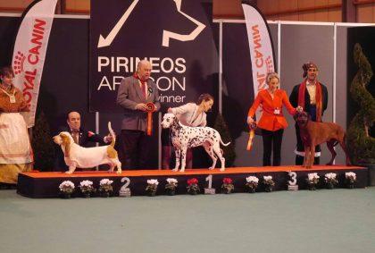 Exposicion Internacional de Zaragoza 2018